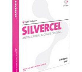SILVERCEL 2 X 2 ANTIMICROBIAL DRSG 10/BX